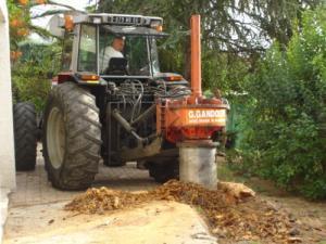 Dessouchage par carottage d'une souche de pin en PACA