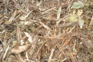 Vente de bois broyés pour paillage